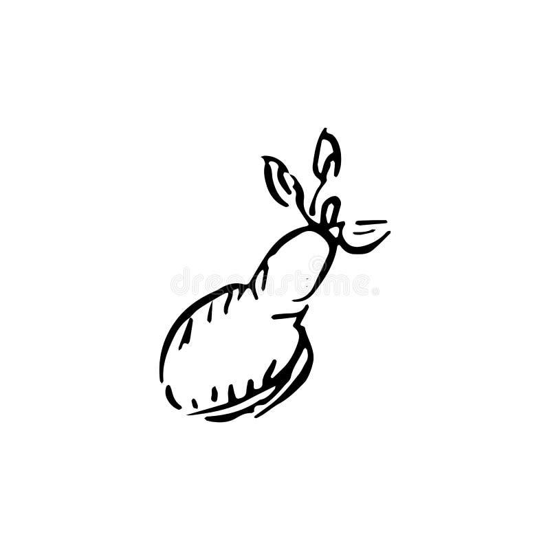 Handdrawn εικονίδιο αχλαδιών doodle Συρμένο χέρι μαύρο σκίτσο σύμβολο σημαδιών διανυσματική απεικόνιση