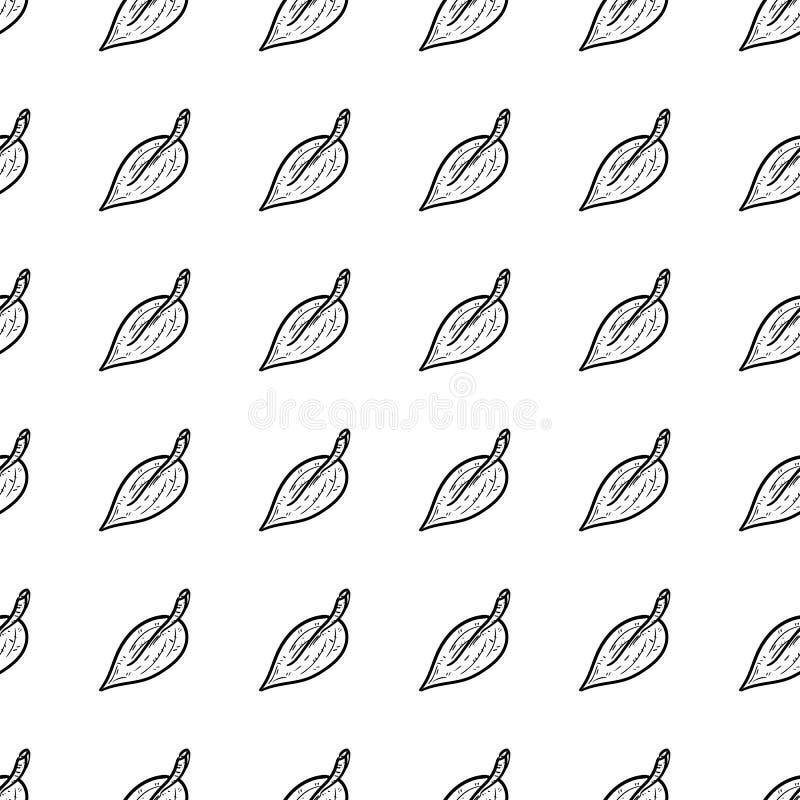 Handdrawn безшовный значок doodle лист картины Эскиз нарисованный рукой черный символ знака Элемент украшения Белая предпосылка и бесплатная иллюстрация