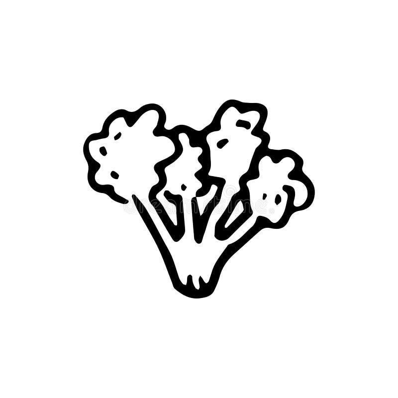 Handdrawn значок doodle брокколи Эскиз нарисованный рукой черный Знак sy иллюстрация вектора