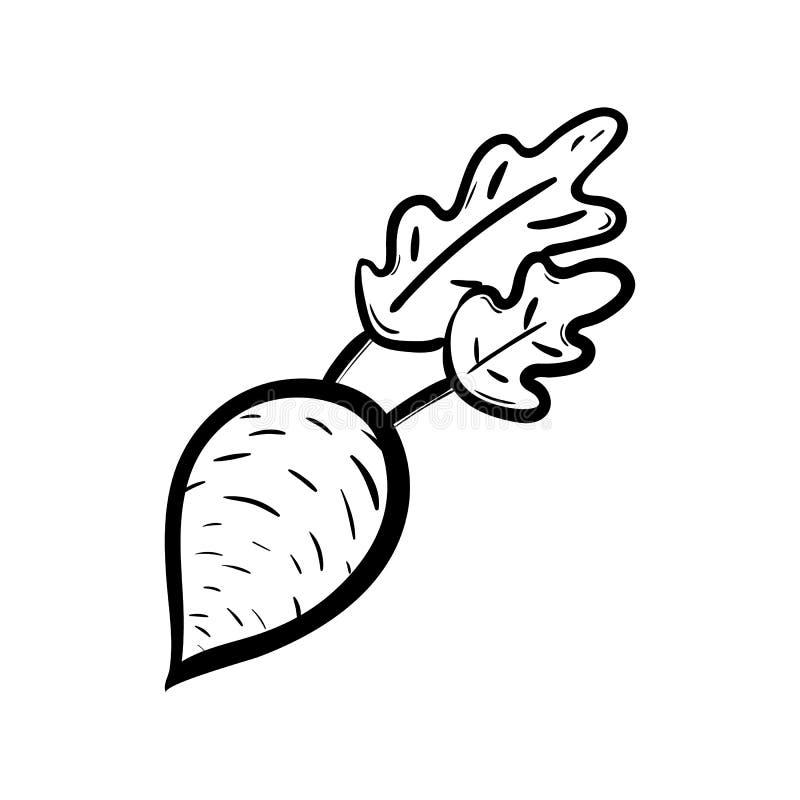 Handdrawn значок doodle свеклы Эскиз нарисованный рукой черный символ знака Элемент украшения Белая предпосылка изолировано Плоск бесплатная иллюстрация
