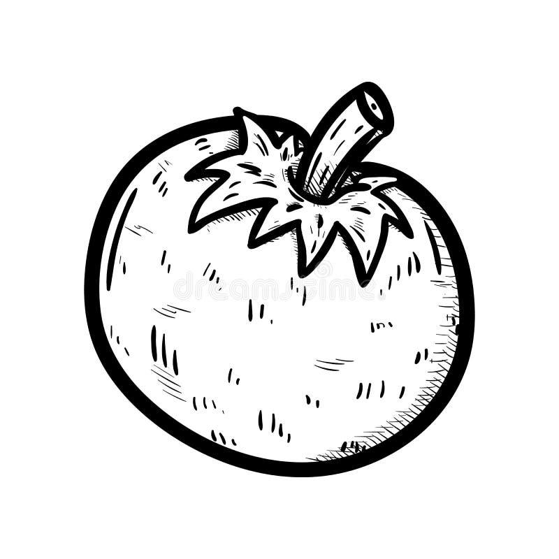 Handdrawn значок doodle томата Эскиз нарисованный рукой черный символ знака Элемент украшения Белая предпосылка изолировано Плоск бесплатная иллюстрация