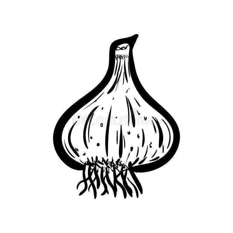 Handdrawn значок doodle чеснока Эскиз нарисованный рукой черный символ знака Элемент украшения Белая предпосылка изолировано Плос иллюстрация штока