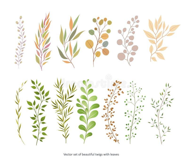 Handdrawn стиль Watercolour вектора, иллюстрация природы Комплект  бесплатная иллюстрация