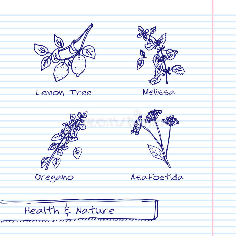 Free Handdrawn Illustration - Health And Nature Set Royalty Free Stock Photography - 46211147
