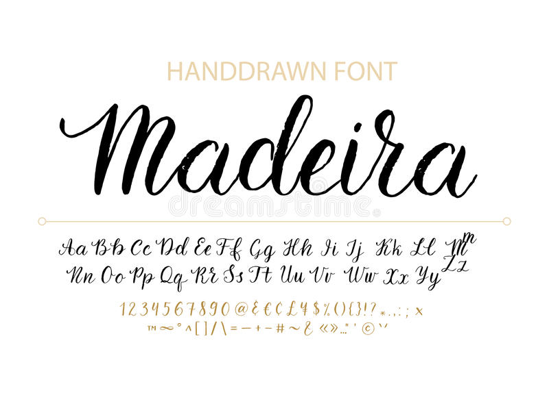 Handdrawn Vector Script font. Brush style textured calligraphy cursive typeface. royalty free stock images