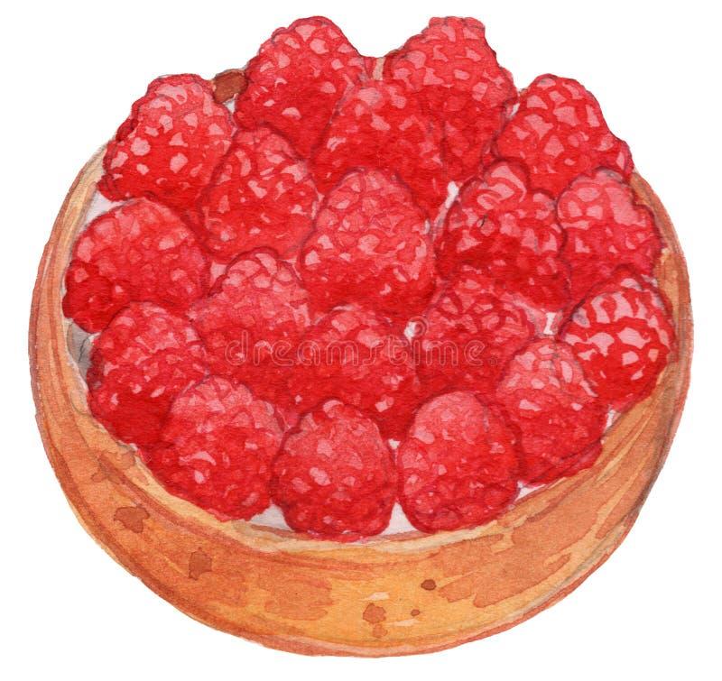 Raspberry Tart Watercolor Illustration stock image