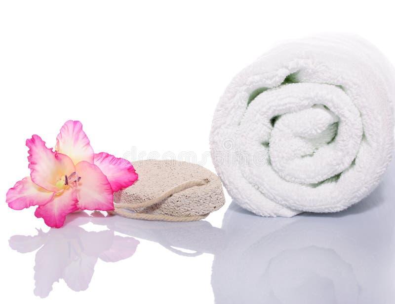 handduk för gladiolapolermedelrock royaltyfri bild