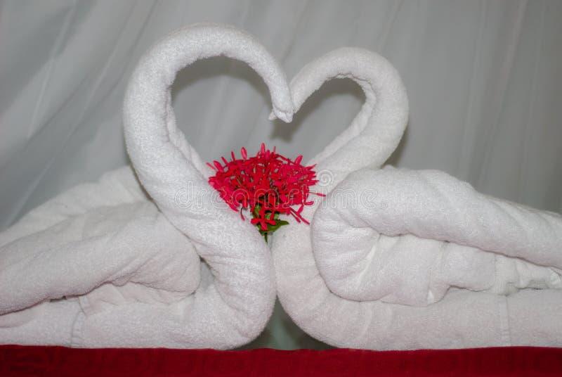 Handdukar vek för att föreställa två svanar arkivbilder