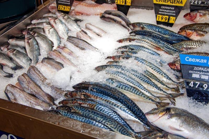 Handel in den frischen gekühlten Fischen lizenzfreie stockfotos