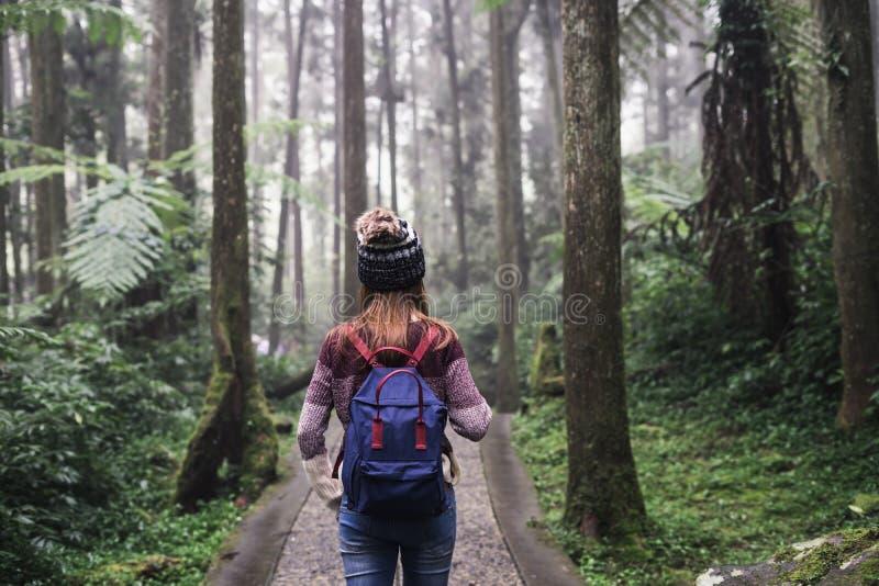 Handelsresande för ung kvinna som går i skogen royaltyfria bilder