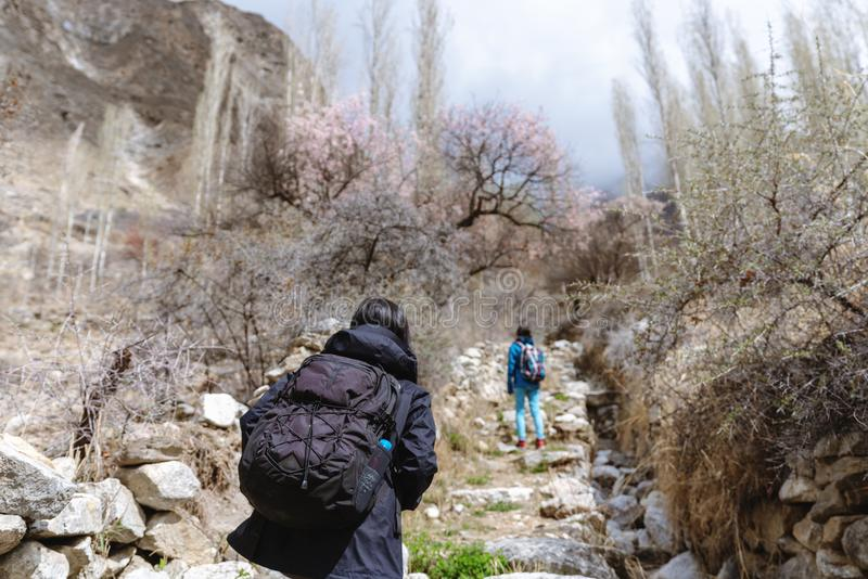 Handelsresande med ryggsäcken som går upp berget i vårskog arkivbild