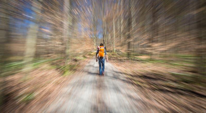 Handelsresande som fotvandrar till och med djup skog i bergen arkivfoto