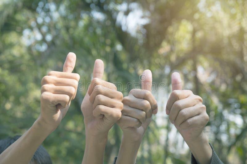 Handen av folk visar gesten av dunsar upp på naturbackgrou arkivfoton