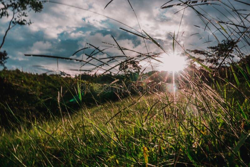 Handen die de zonnestralen van een zonsondergang behandelen stock foto