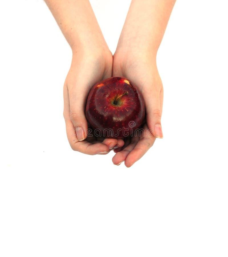 Handen die een appel houden stock foto