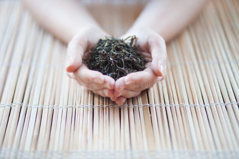 Handen die een thee houden royalty-vrije stock foto's