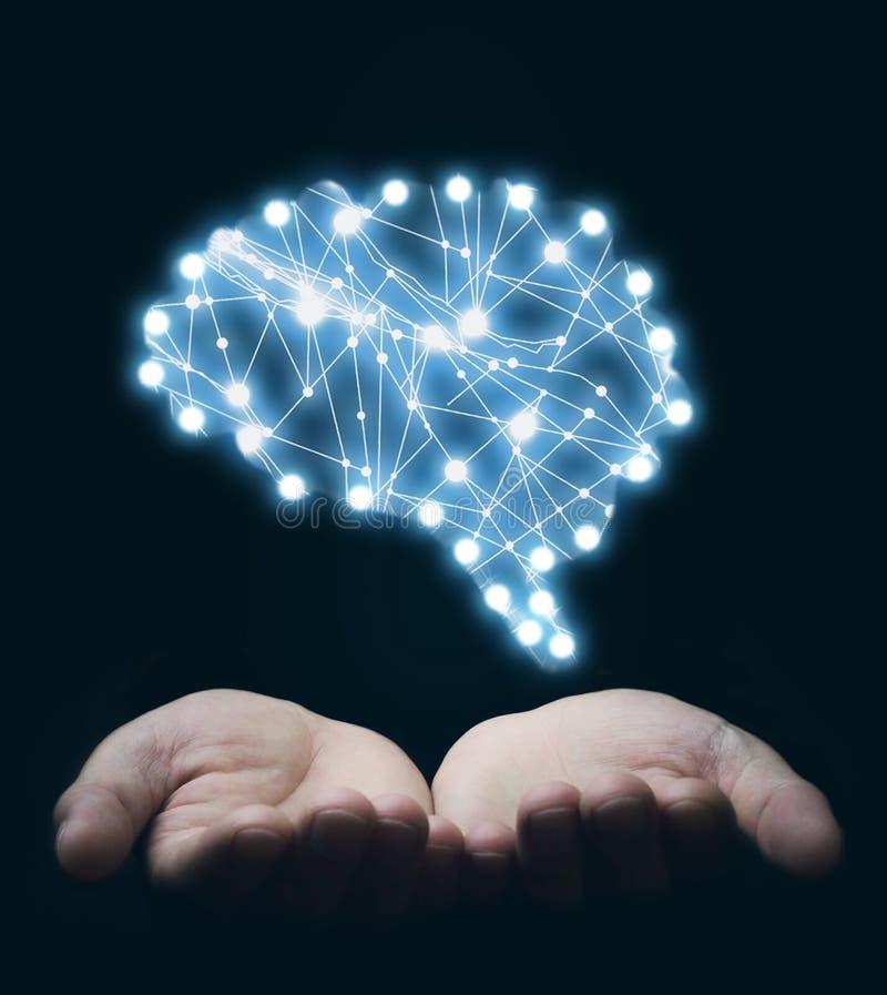 Handen die hersenen houden Inspiratie en creativiteitconcept royalty-vrije stock foto's