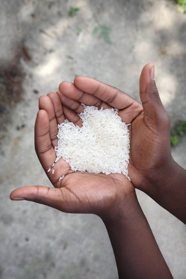 Handen die rijst houden stock fotografie