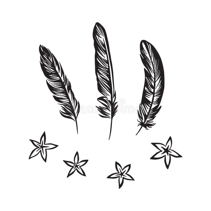 Handen drog fjädrar och blommor ställde in översikten skissar Teckning f?r vektorsvartf?rgpulver som isoleras p? vit bakgrund Gra royaltyfri illustrationer