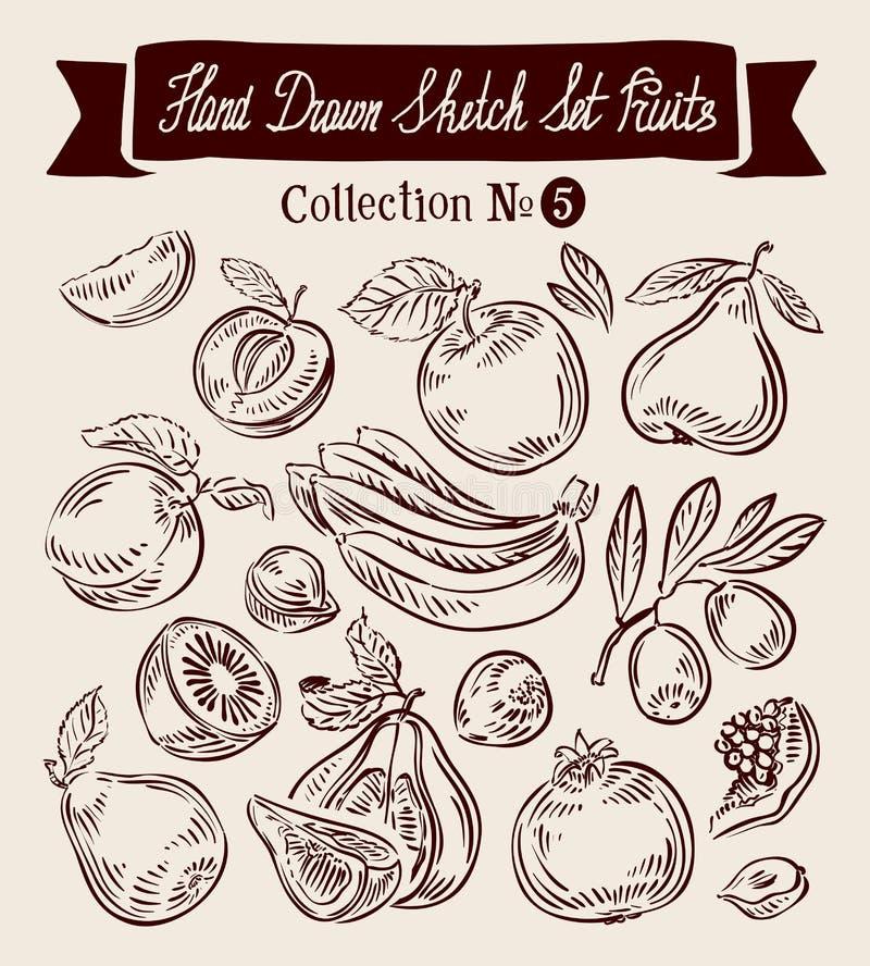 Handen drog vektorn skissar samlingsfrukt stock illustrationer