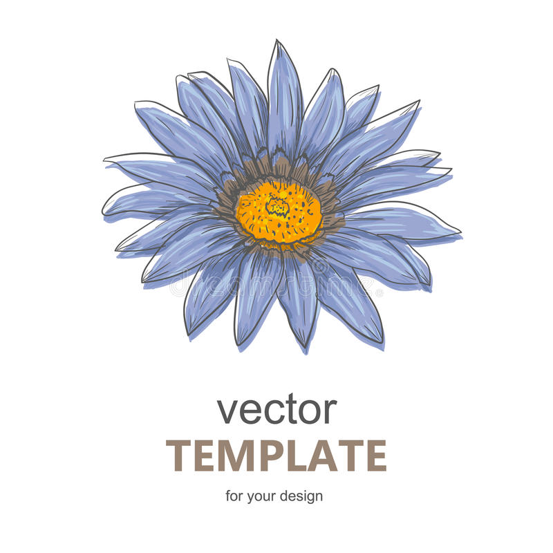 Handen drog vektorpennan och färgpulverillustrationen av Gerberatusenskönan blommar royaltyfri illustrationer