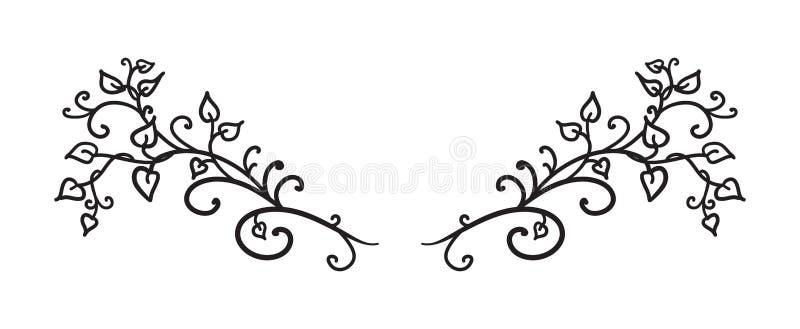 Handen drog vinrankor lämnar krullning och virvlar runt vektorn i det utsmyckade designbeståndsdelavsnittet eller textavdelaren s royaltyfri illustrationer