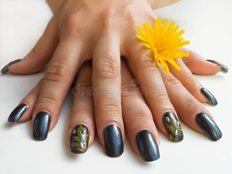 Handen en bloem royalty-vrije stock fotografie