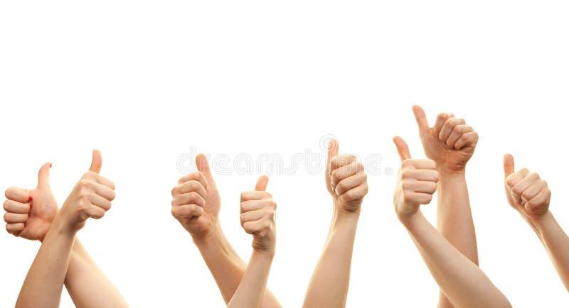Handen en duimen voor witte achtergrond omhoog worden geïsoleerd die stock fotografie