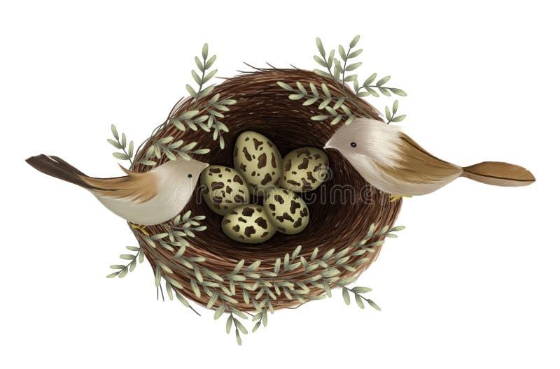 Handen målade av fågelsammanträde på rede med ägg och filialen som isolerades på vit bakgrund, naturillustration arkivbilder