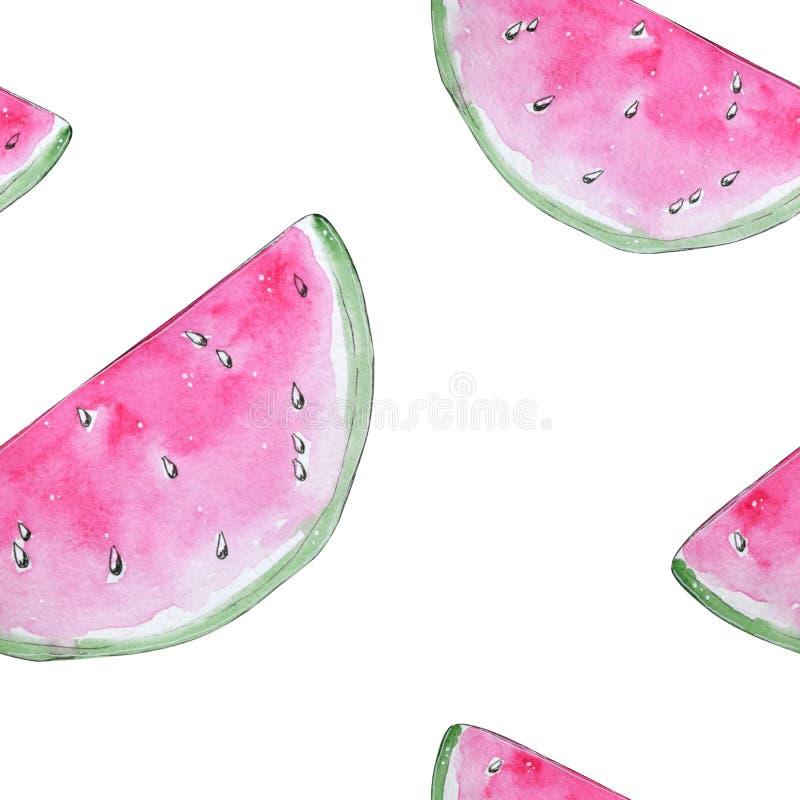 Handen målade modellen för den rosa vattenmelon för vattenfärgen den sömlösa royaltyfri illustrationer