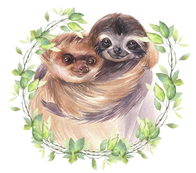 Handen målade vattenfärgdjurillustrationen Gulliga par som ler sengångare vektor illustrationer