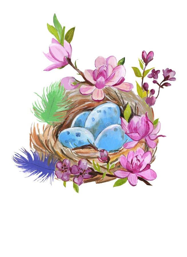 Handen målade vattenfärgtrastens rede med ägg på vit Aquarellenaturillustration stock illustrationer