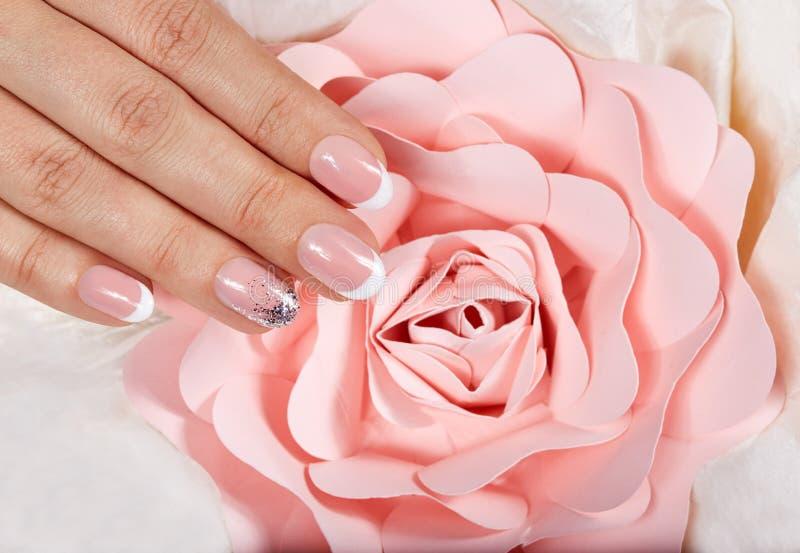 Handen med konstgjort manicured franskt spikar och den rosa rosa blomman royaltyfria bilder