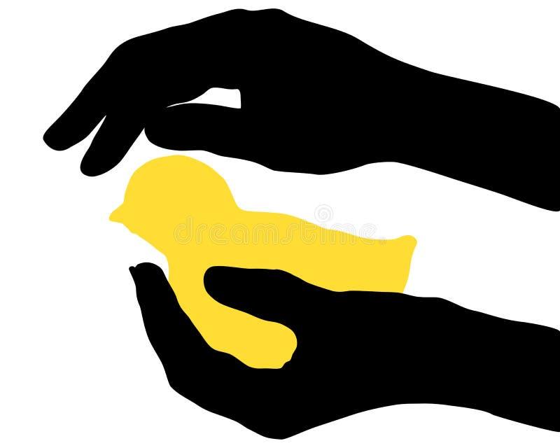 Handen met kuiken vector illustratie