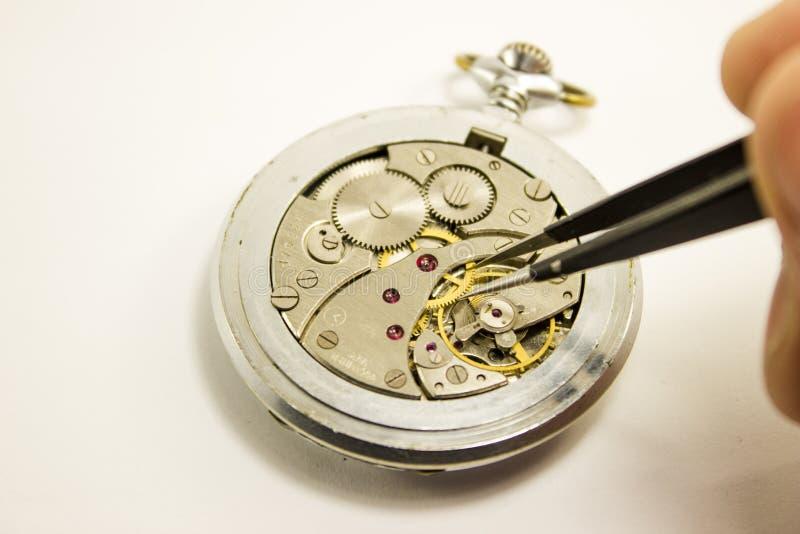 Handen reparerar den mekaniska klockan på vit bakgrund royaltyfri fotografi