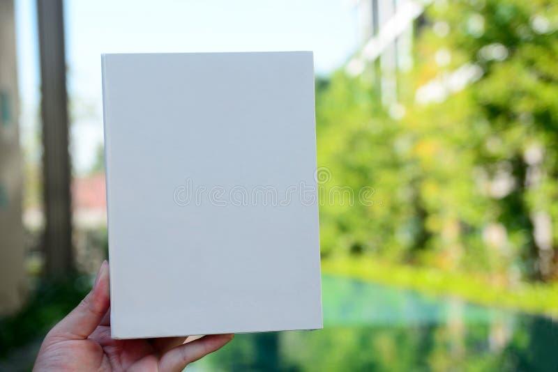 Handen rymmer det vita arket på bakgrund arkivbilder