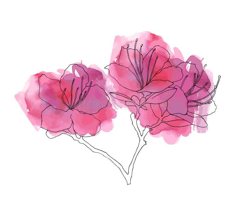 Handen skissade rhododendron Ledebour stock illustrationer