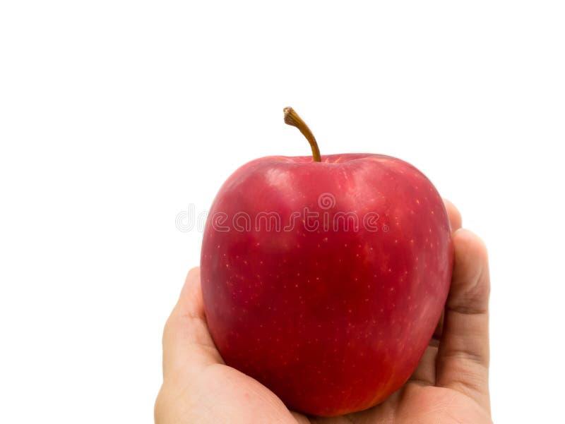 Handen som rymmer det nya r?da ?pplet, som f?rest?ll frukt f?r, bantar och det bra h?lsov?rdbegreppet som isoleras p? vit bakgrun arkivbilder