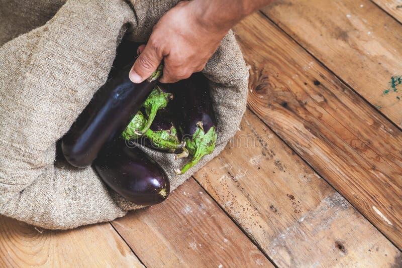 Handen tar aubergine från påse på träbräden royaltyfria bilder