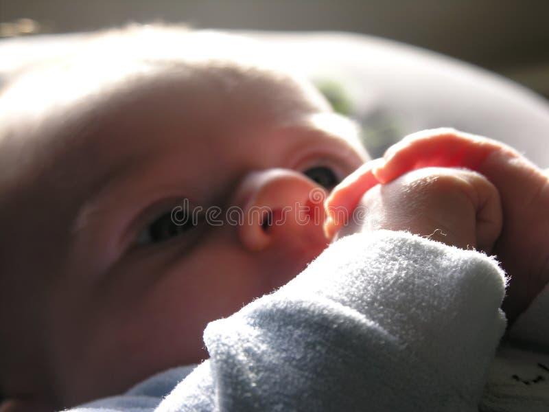 Handen van een babymeisje stock foto