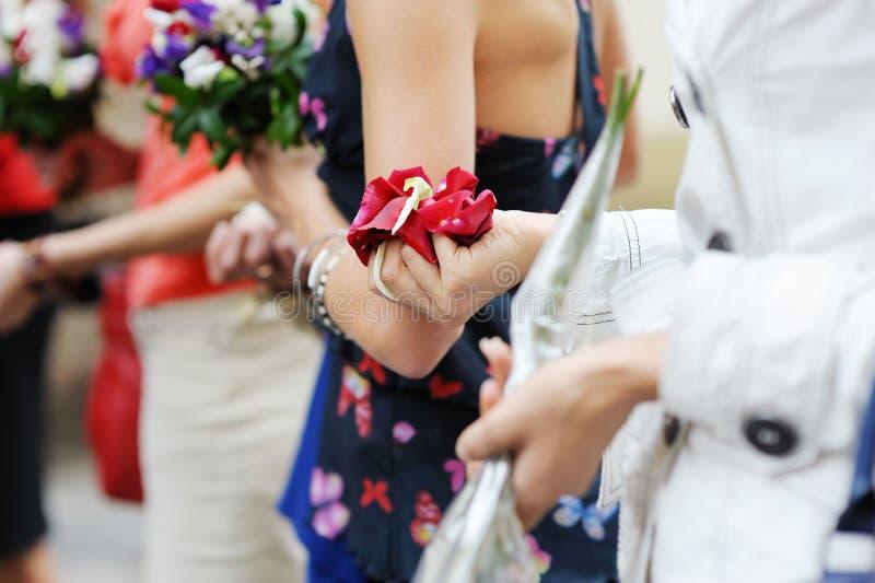 Handen van een vrouwenhoogtepunt van roze bloemblaadjes royalty-vrije stock afbeelding