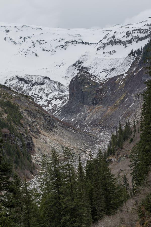 Handfat för Nisqually glaciärflod arkivfoto