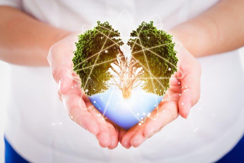Handfolket sparar jorden skyddar miljö- begrepp royaltyfri bild