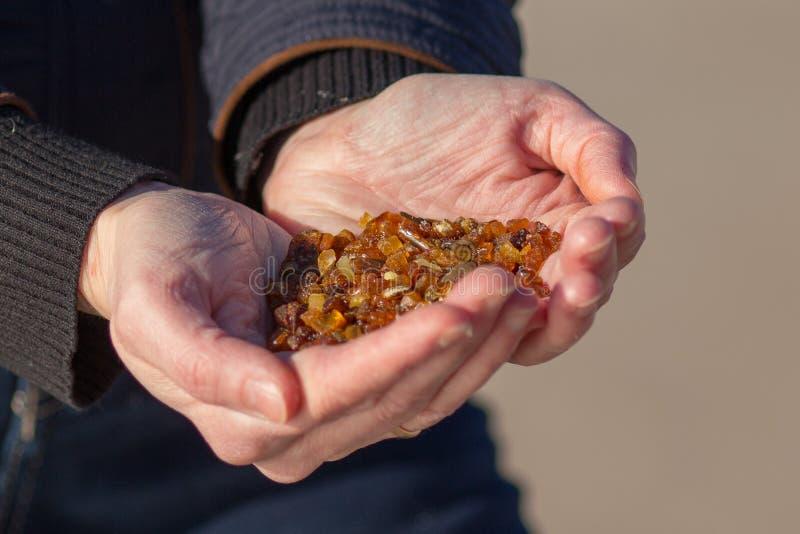 Handful of amber stock photos