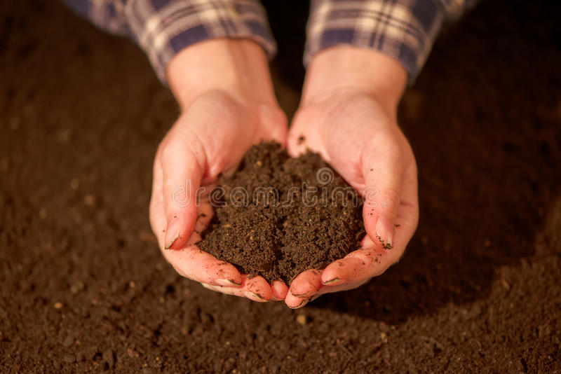 Handful of arable soil in hands of responsible farmer. Handful of arable soil in hands of responsible female farmer, close up, selective focus royalty free stock image