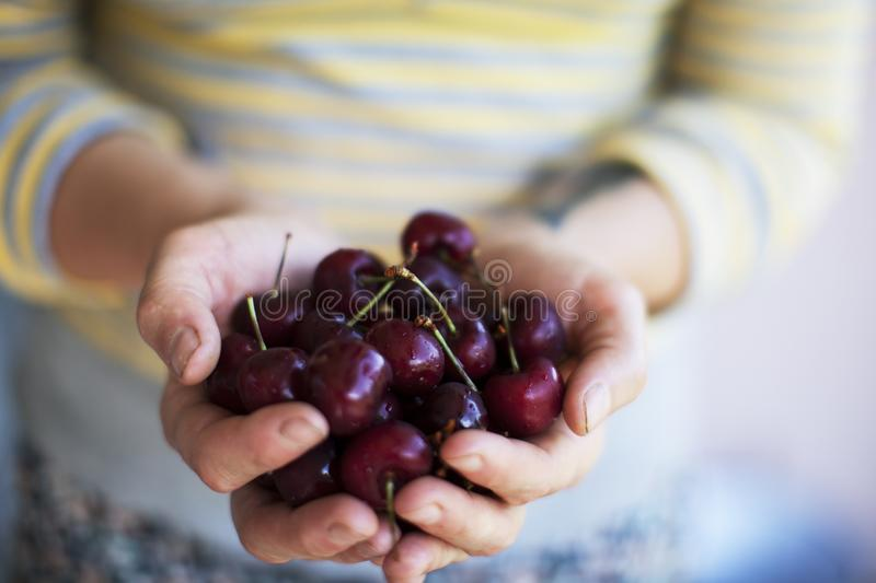 A handful of beautiful appetizing and fresh cherry berries stock photos