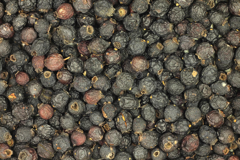 A handful of dried berries of black hawthorn royalty free stock image