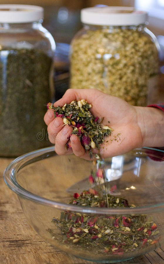 Download Medicinal Herb Mix stock image. Image of medicinal, holistic - 30094139