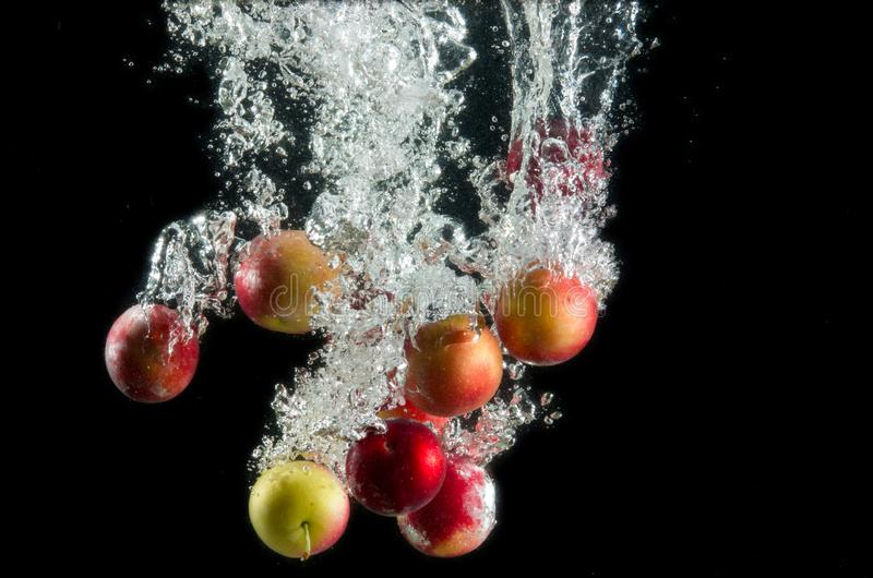 A handful of red and yellow plums in water splash with bubbles on a black background. stock image
