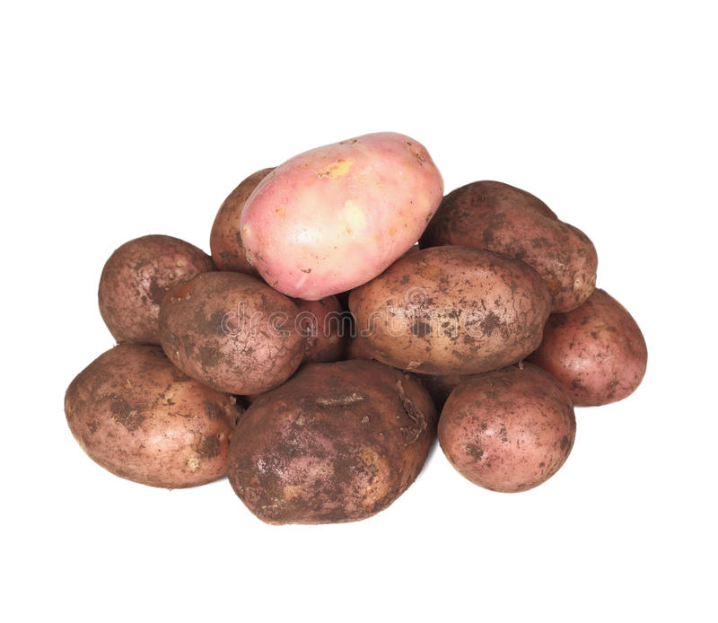 Download Handful of young potato. stock photo. Image of healthy - 16026970